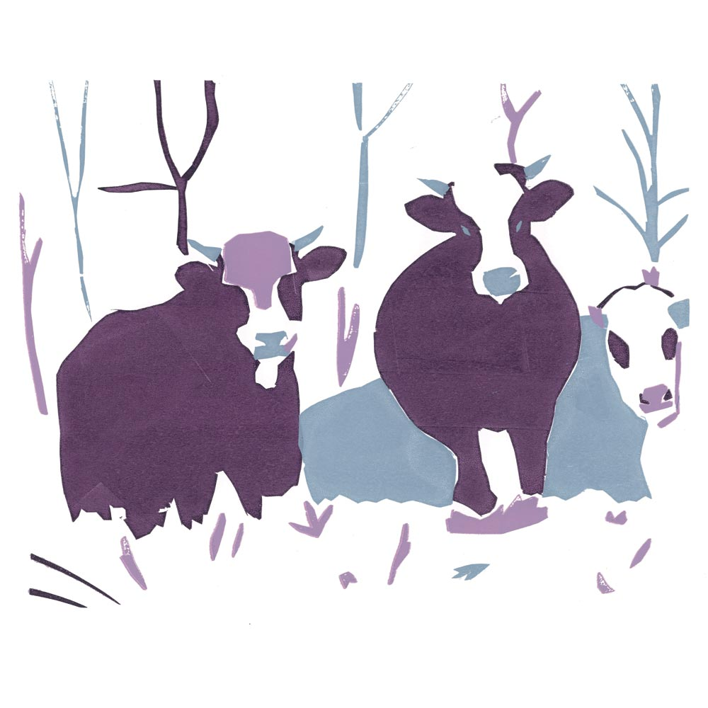 Winter-Cows–silkscreen – Copy