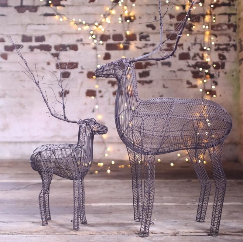 Reindeer_1
