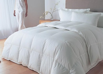 Duvets, Pillows & Bedding Protection