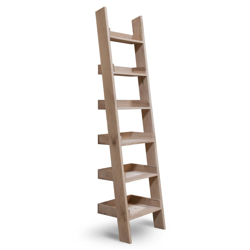 Hambledon_shelf_-ladder_s2